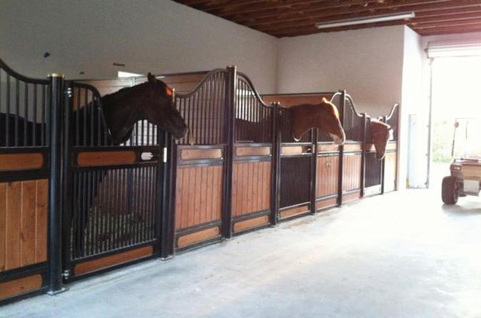 11 Features Found In The Best Horse Stalls Saratoga Stalls