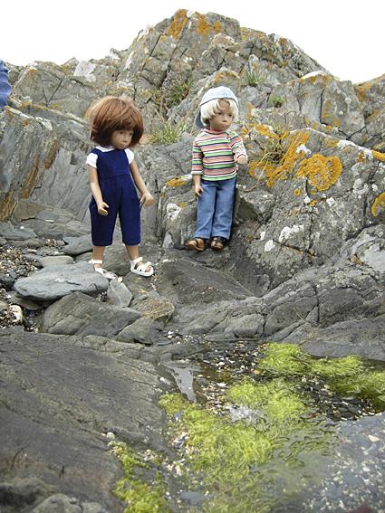 Rock Pools Story 5