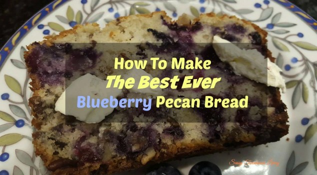 How To Make The Best Blueberry Pecan Loaf Ever!- Sassy Townhouse Living