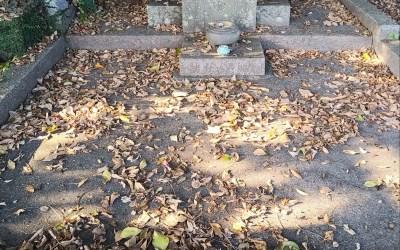 島原市内の汲取り・浄化槽の専門業者が提供するお墓のお掃除編 ありが隊事業 暮らしのサポートサービス