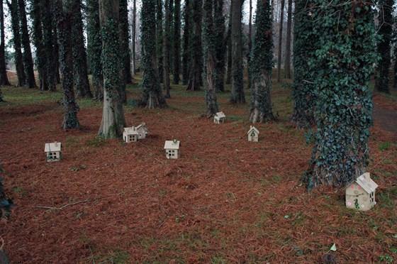 森の中での撮影