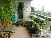 Edible balcony | Saucy Onion | Page 4