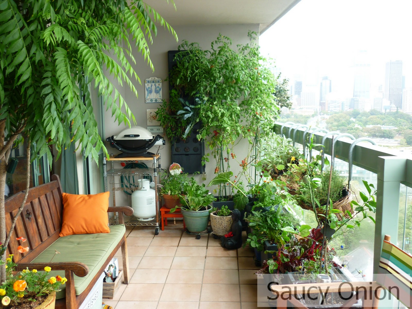Balcony Privacy Plants Edible Balcony Late Summer Tomatoes Saucy Onion