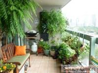 Edible Balcony  Late Summer Tomatoes | Saucy Onion
