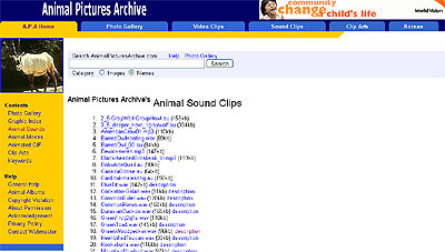 Animal Sounds 50+ Best Sites To Download Free Sound Effects