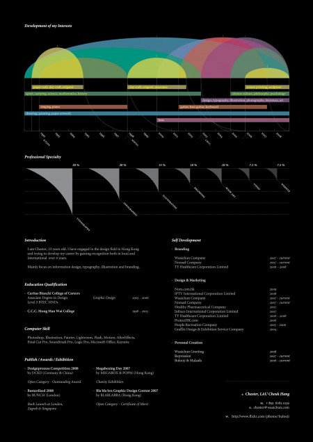 417 e1269803065796 100 Most Creative Resume Examples for Inspiration