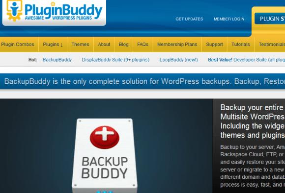 bb 580x394 Best WordPress Plugins for Backup and Optimization