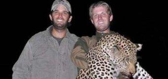 N.J. Senator throws Twitter tantrum over hunting habits of Trump's sons