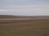 Орловская степь. Оренбургская область