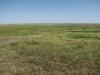 Орловская степь. Оренбургская область. Фото А. Барашковой