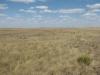 Оформление степного памятника природы «Акжарская степь» в Оренбургской области