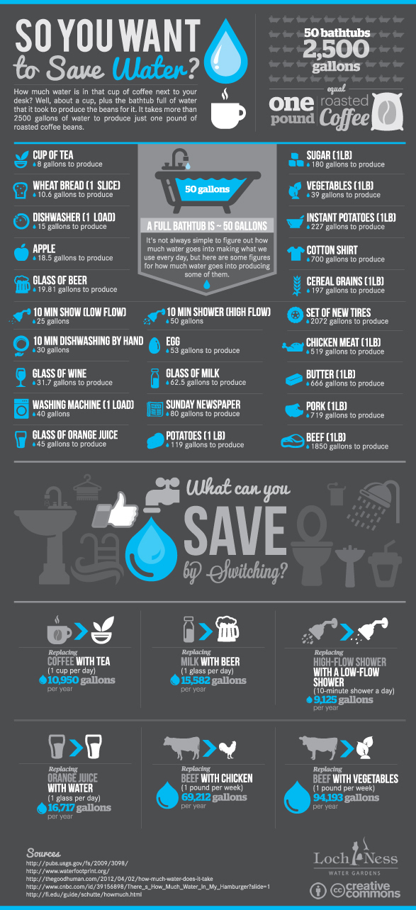 water conservation Tips Reducing Your Water Footprint