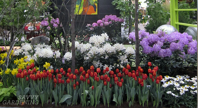 Check Out Spring Gardening Shows