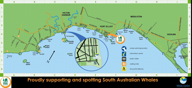 Whale Sighting Map Updated-min (1)