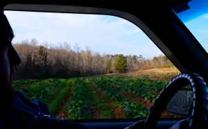 Cane Creek Farm- Mike