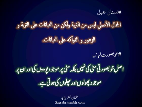 #Khoobsurat Libas Asal khoobsurti mitti ki nahin, balkeh mitti par mojood podon ki aur un par mojood pholon aur phalon ki hoti hai. (Usman Zafar Paracha – Arabic Urdu Quote)