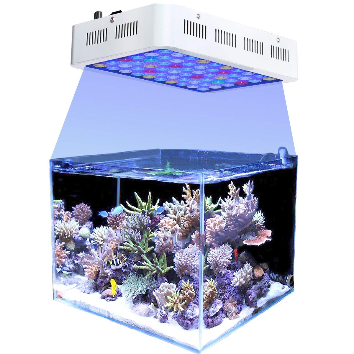 Led Licht Für Nano Aquarium Cheap Nano Reef Led Lighting Find Nano Reef Led Lighting Deals On