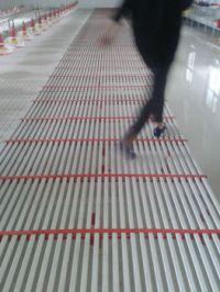 Poultry House Plastic Slat Floor - Buy Poultry Plastic ...