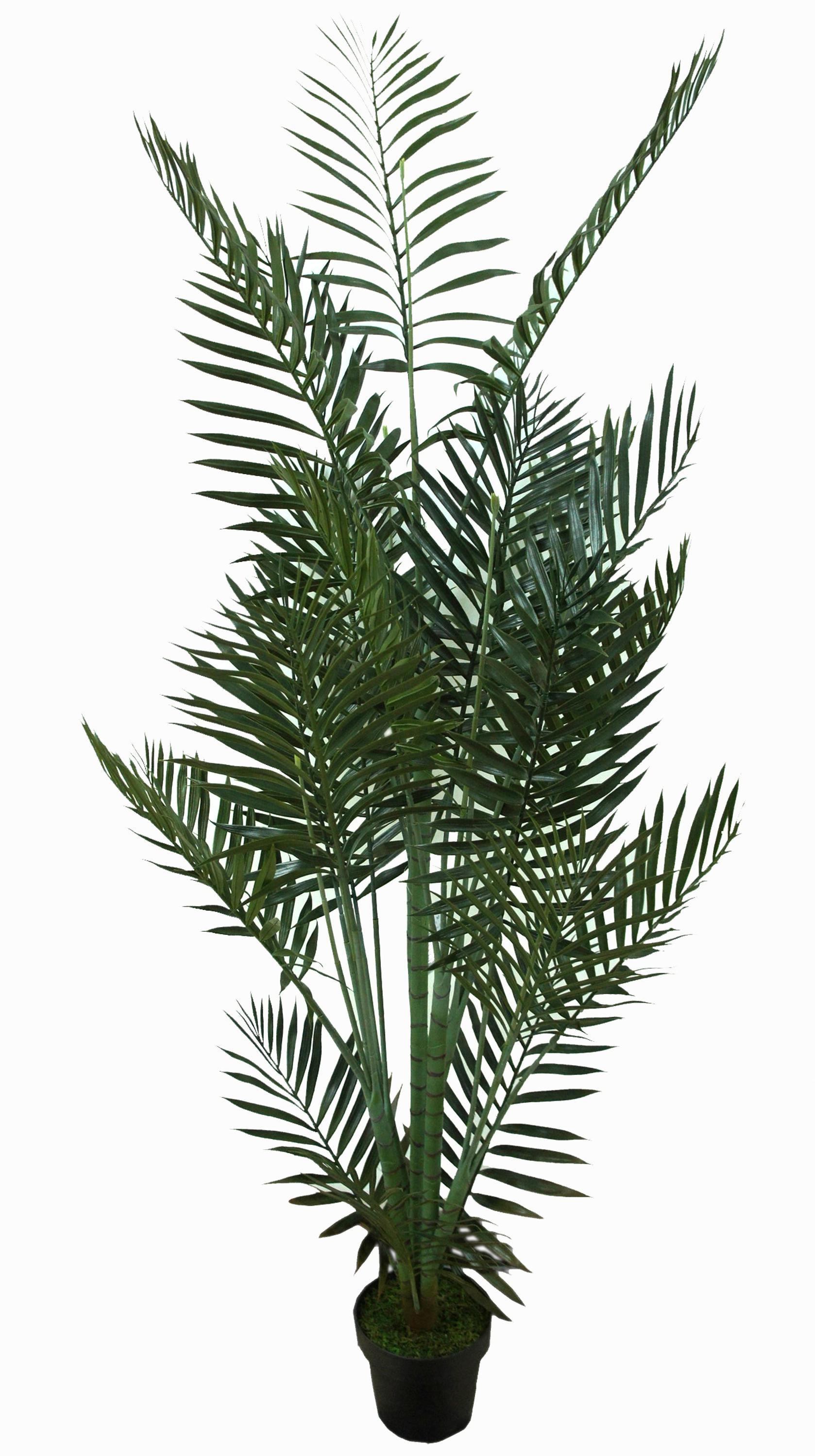 Artificial Chrysalidocarpus Lutescens Artificial Areca Palm Tree Potted Plants Artificial Chrysalidocarpus Lutescens Bonsai Synthetic Indoor Coconut Tree Buy Bonsai Tree Artificial Palm
