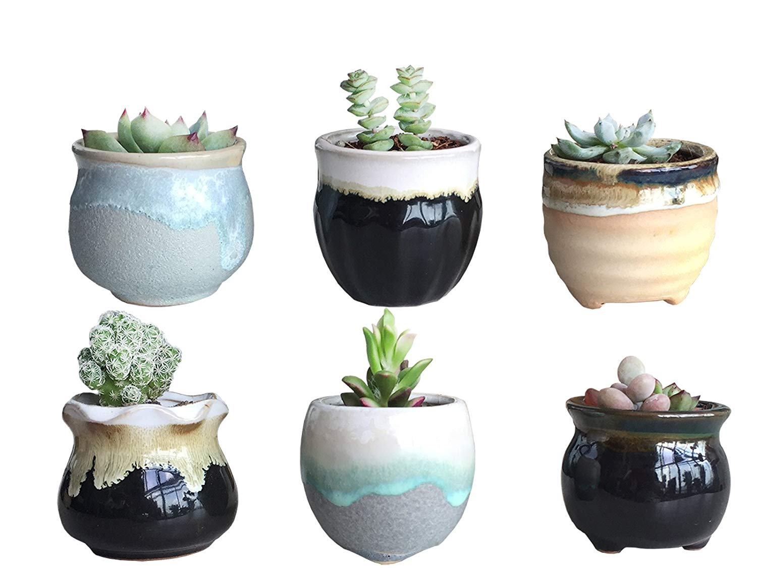 Cactus Planting Pots Cheap 9 Inch Plant Pots Find 9 Inch Plant Pots Deals On Line At