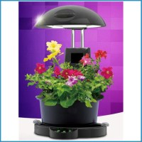 Indoor Garden Plant Grow Light,Indoor Plant Hydroponic ...