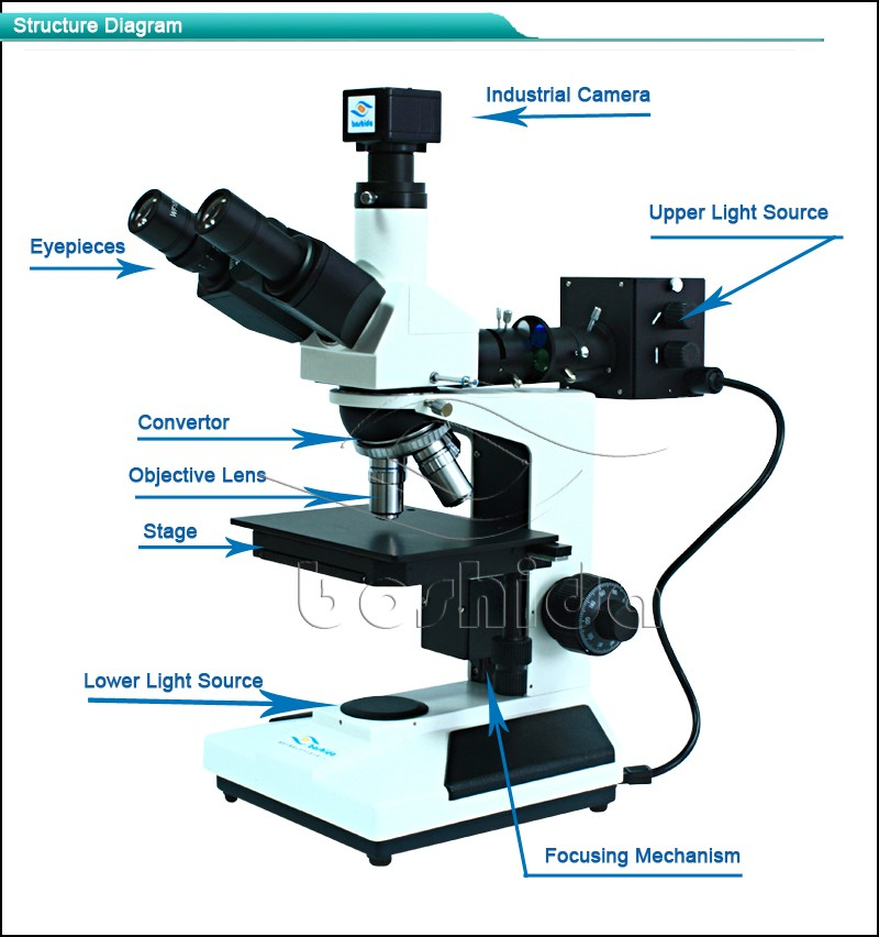 Polarized Light Optical Mechanical Sectioned Microscope,Polarizing