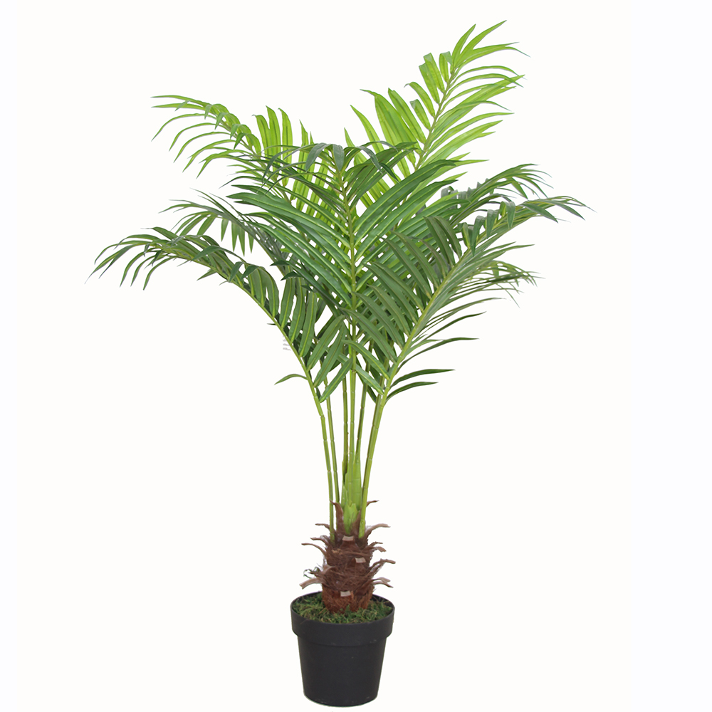Artificial Areca Palm Tree Potted Plants Artificial Chrysalidocarpus Lutescens Bonsai Synthetic Indoor Coconut Tree Buy Artificial Chrysalidocarpus China Palm Trees Plants China Palm Trees Plants Manufacturers And