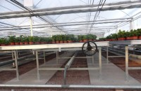 List Manufacturers of Rolling Greenhouse Benches Tables ...