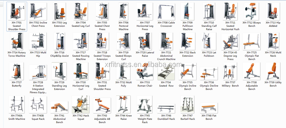 Wholesale Company Names In India Commercial Gym Equipment Deltoid Exercise Machine For