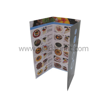 Hot Sale Personalized Accordion Fold Brochure Printing - Buy - accordion fold brochure