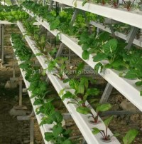 Pvc Pipe Plant Plastic Flower Pot Cover Indoor Hydroponic ...
