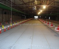 Pp Material Poultry Plastic Slate Flooring For Chicken ...