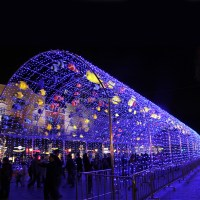 Customized Colorful Fish Tunnel Led Outdoor Lighting ...