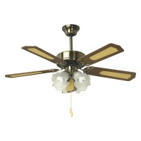 Best Place To Buy Ceiling Fans | WANTED Imagery