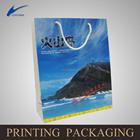 custom made promotion paper bag,gift paper bag china supplier---jm0091