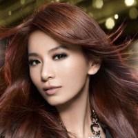 Ammonia Free Effectively Cover White Hair Beijing Hair ...