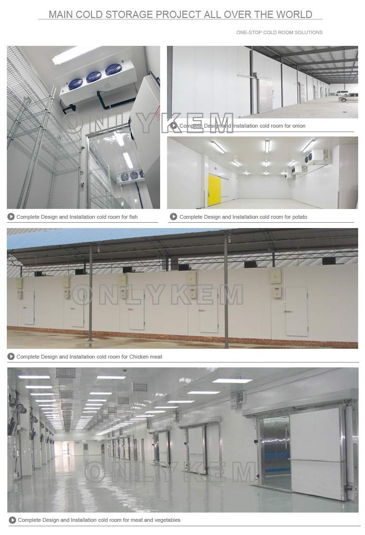 Professional Solution Potato Cold Storagecold Room For