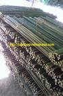 bamboo pole , bamboo cheap, vietnam bamboo cheap