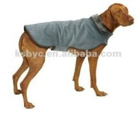 Dogs for sale--dog clothes, View dogs for sale, petdoz ...