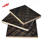China Manufacturer Top Quality Black Film Faced Plywood