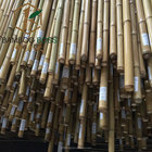 Moso natural bamboo cane of PE retail packaging