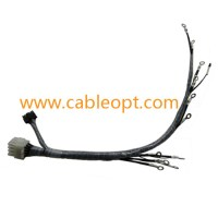 Swell 12 Pin Wire Harness T E2 8 Pin Wire Harness 23 Wiring Diagram Wiring Cloud Geisbieswglorg