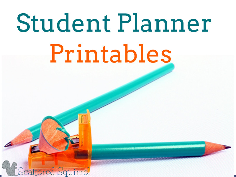 Getting Ready for Back to School - Student Planner Printables - weekly study schedule