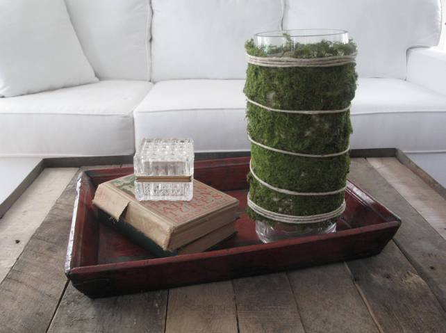 Moss hurricane Lamp diy