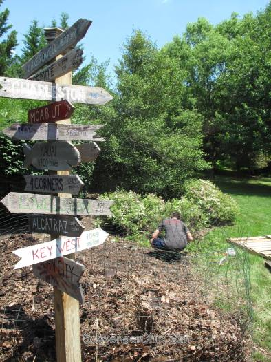 Pallet Garden vs Pallet Garden