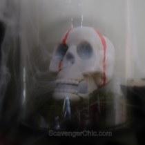Glass Cloche, Glass Dome Halloween Decorating