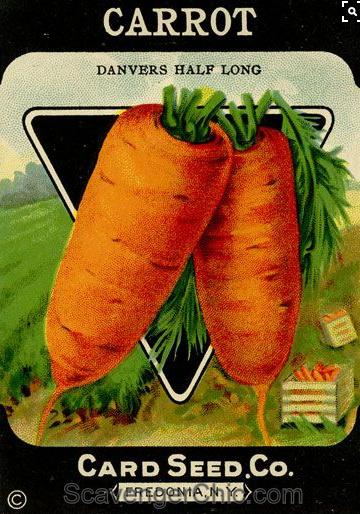 Vintage Carrot Seed Packet Pallet Wood Sign.bmp