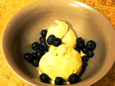 SCD Recipe: Banana Coconut Milk Ice Cream