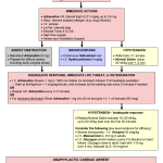 Anaphylaxis Management Flow Chart