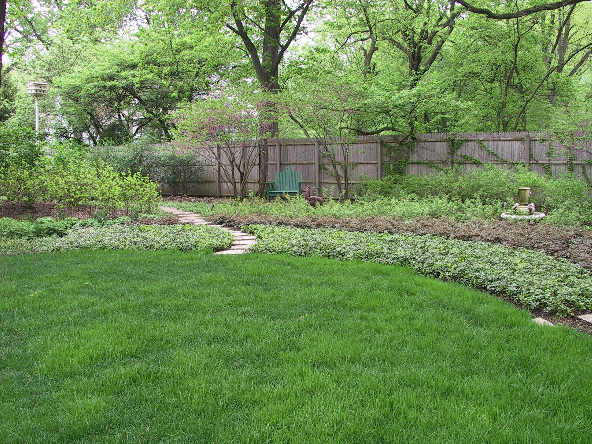 Backyard Clean Up Lawn And Yard Clean Up Arlington Heights Archives Schmechtig